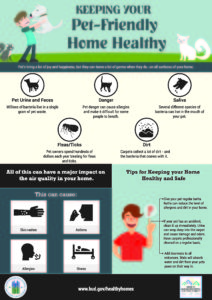Cover photo for Keep Your Pet-Friendly Home Healthy